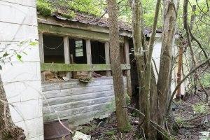 housewoods-9