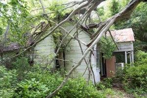 housewoods